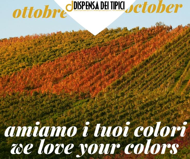 Ottobre, amiamo i tuoi colori [IT] October, we love your colors [EN]  www.dispensadeitipici.it not only wine & food  #ddt  #ottobre #october #colors #colori