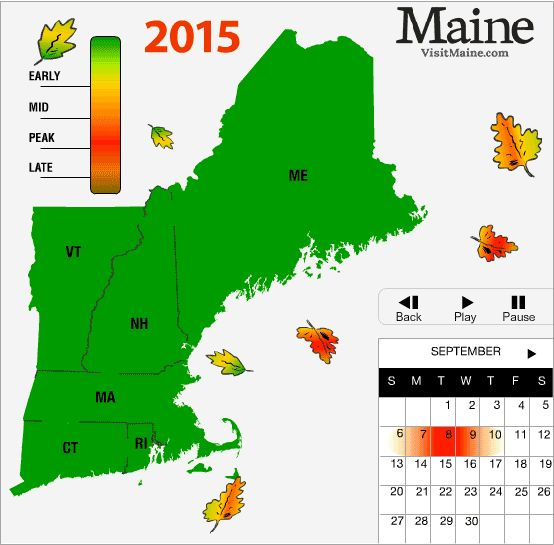 Fall Foliage / Fall Leaves - When to find peak color in New England. We love Autumn!