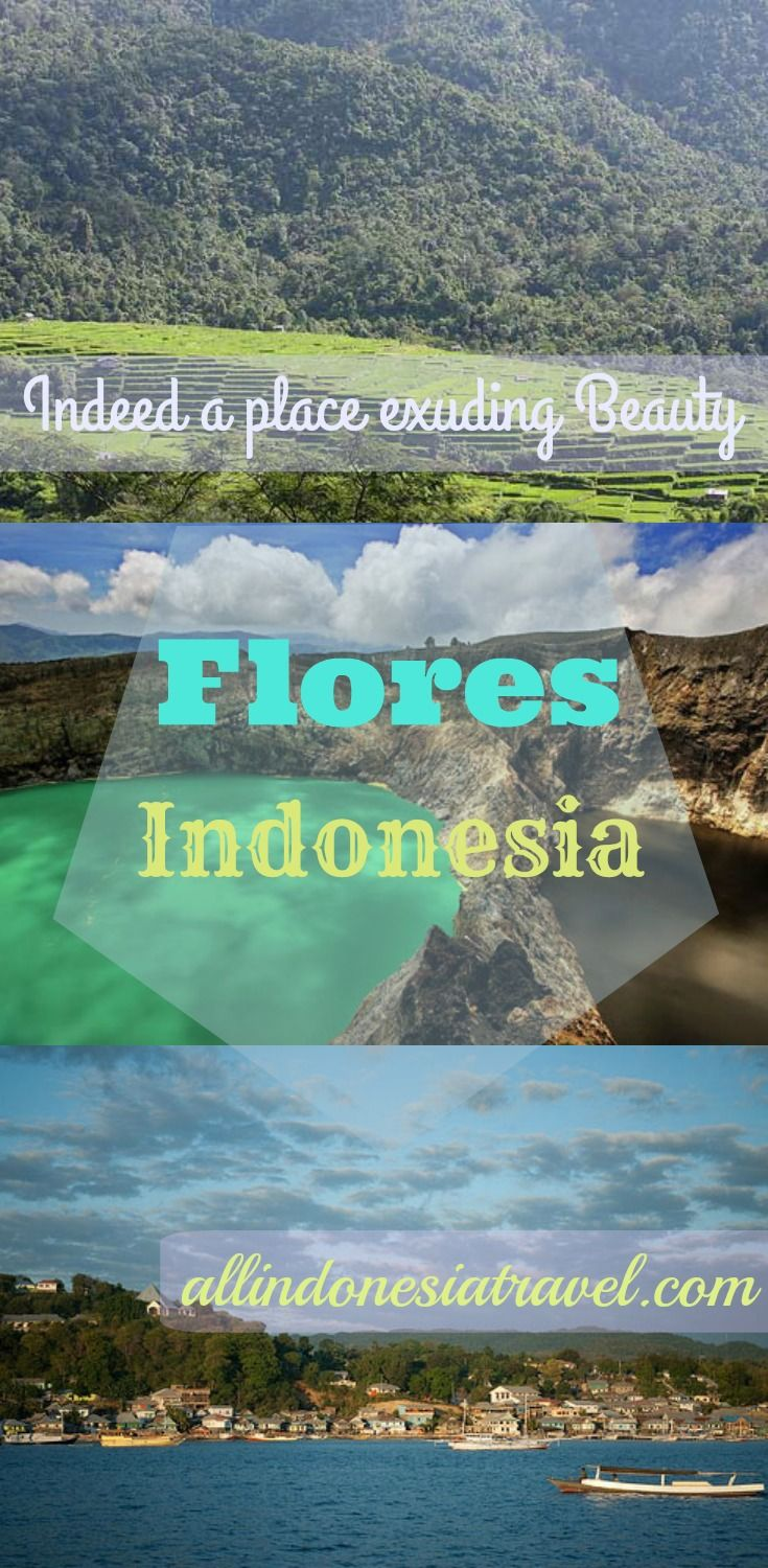 Flores means Flower in Portuguese, and it is indeed a place exuding beauty like its name. It is one of the Lesser Sunda islands and is still largely unexplored by travelers in terms of tourism. If you are looking for an adventurous and explorative independent traveling, this may be your answer. | Travel Guide to Flores, Sumba and Sumbawa | http://allindonesiatravel.com