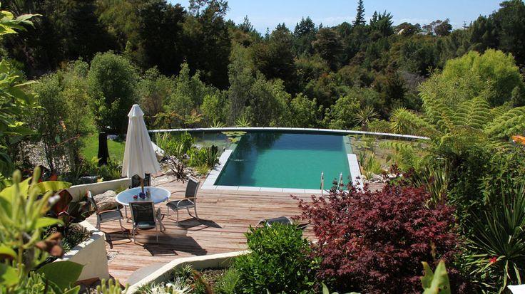 BIOTOP Natural Pools | Garden Ponds | Nature Pools: Gardens Ponds, Water Gardens, Dream Pools, Dream House, Bio Pools, Pools Gardens, Natural Pools, Nature Pools, Nature Swimming Pools