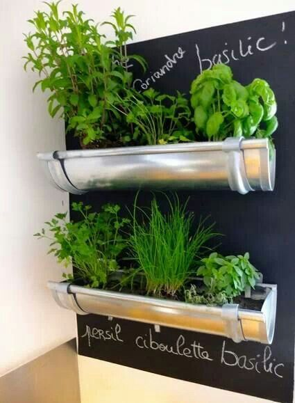 Interesting addition to herb garden. Really enjoying the chalkboard paint backing.