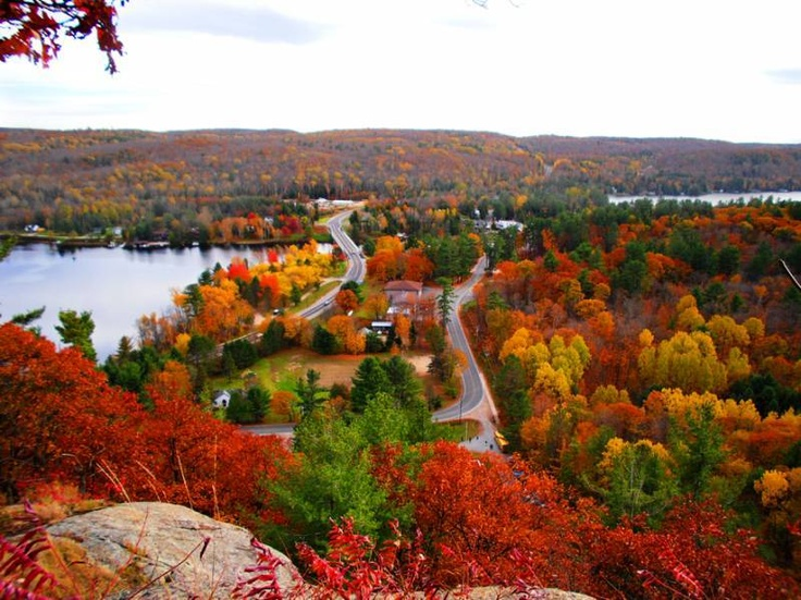 awesome #landscape #fall #green #red #yellow