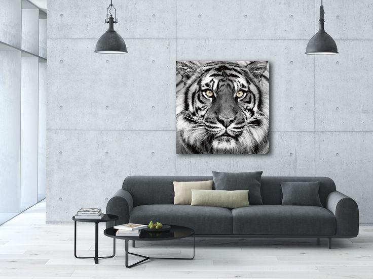 Animal Wild! Dit schilderij van het gezicht van een tijger is gedrukt achter glas. De afmeting van het schilderij is 80x80.