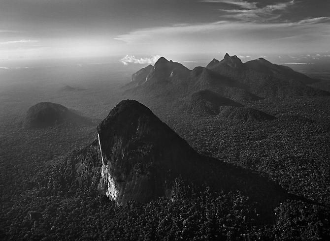 by Sebastiao Salgado,Amazon Forest