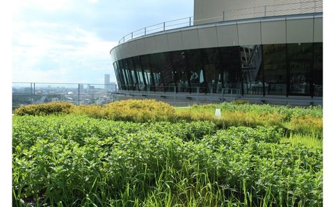 Rooftop Garden Mojitos - View & Dining The Sky - Time Out Tokyo