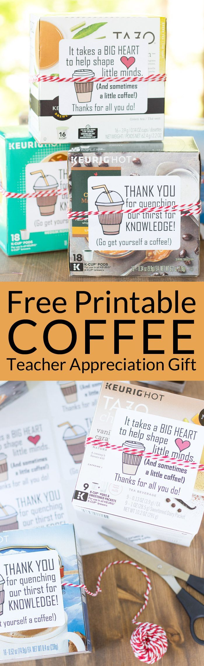 307 best diy teacher appreciation gifts images on pinterest the 5 minute coffee teacher appreciation gift solutioingenieria Images