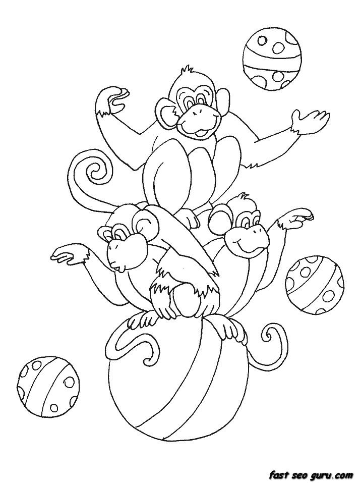Pin By Erika Todden On Poster Pinterest Coloring Pages Monkey