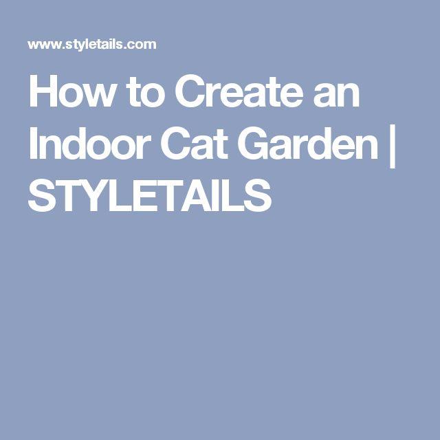 How to Create an Indoor Cat Garden   STYLETAILS