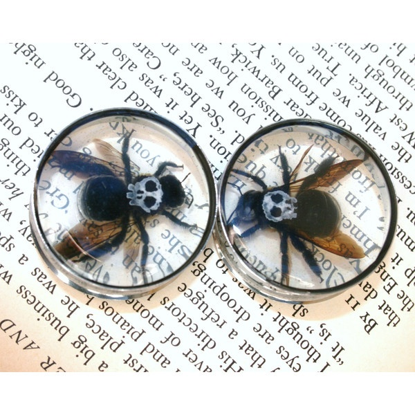 Bee Skull Plugs Resin for Gauged Ears One of a Kind OOAK size 1 1/4... ($30) ❤ liked on Polyvore
