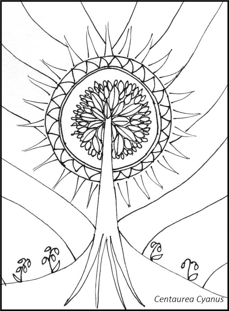 free coloring page by Centaure Cyanus - tree to the sky - Az égig érő fa - hungarian fairytale