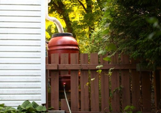 "Simple Bites' post: ""Rain Barrels: How we installed ours and other tips"""