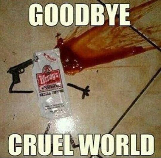 goodbye cruel world,wendys tomato ketchup package,meme ...