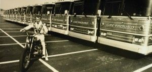 On October 25, 1975, Knievel successfully jumped fourteen Greyhound buses at the Kings Island theme park in Ohio. Although Knievel landed on the safety deck above the 14th bus (the frame of the Harley-Davidson actually broke) his landing was successful and he held the record for jumping the most buses on a Harley-Davidson for 24 years. The Kings Island event scored the highest viewer ratings in the history of ABC's Wide World of Sports and would be Knievel's longest successful jump at 163…