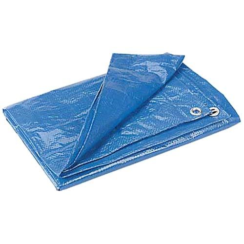 Tarpaulins (several), cut or folded to standard double bed size, used as underlays for picnic blankets and quilts. Keeps them safe from grass stains and water seepage from moist soil. Plus, if it rains, they make great emergency group umbrellas! (Speaking from experience here!)