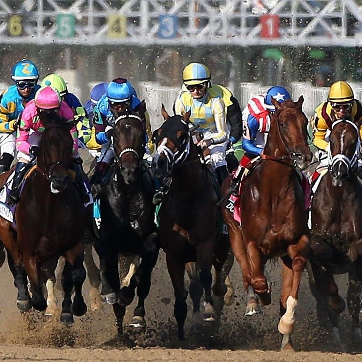 """The 2017 Kentucky Derby is the 143rd renewal of """"The Greatest Two Minutes"""" in sports.  Follow: @redvelvetrope -  @harvardclubboston - Who would you like to go this event with? TAG THEM - Tag #redvelvetrope to be featured -  #luxuryhotel  #bestintravel"""