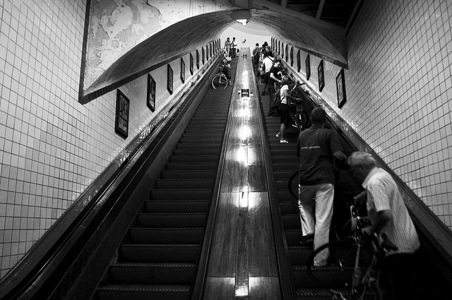 Antwerp Wooden Escalator by Leemreijze-Nicky Mosselman, via Flickr