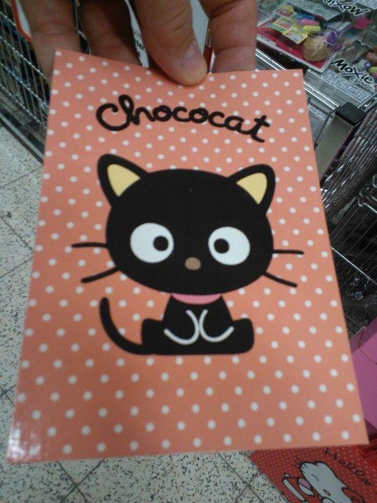 Suklaakissa kortit