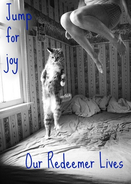 Jump for joy our Redeemer Lives