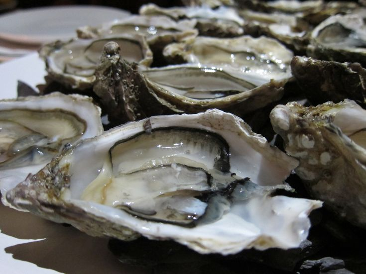 oysters eatabout