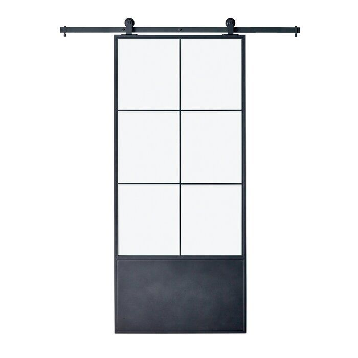 Glass Paneled Metal And Glass Broadway Barn Door With