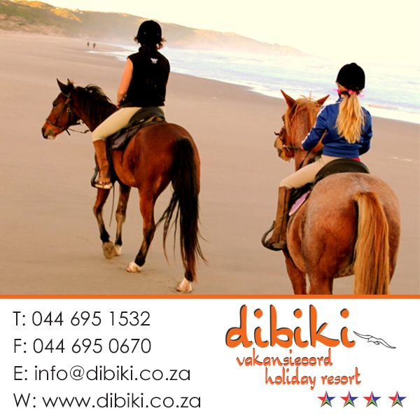 There are a lot of things to do in and around Mossel Bay and Dibiki Holiday Resort. Stay with us for more. #activities, #horseriding
