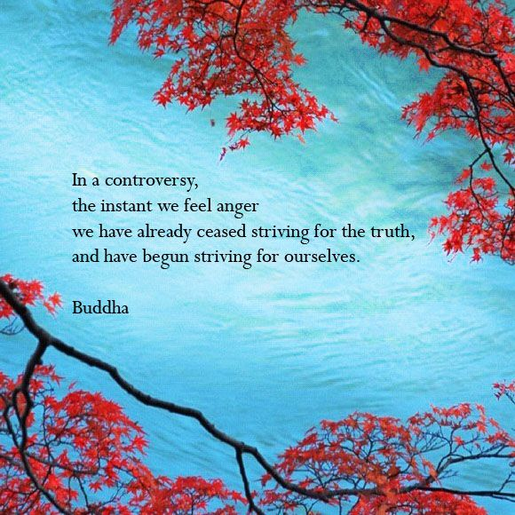 I thought this quote was lovely, and the picture enhanced the message to me. I'm not much of a buddhist but I think every religion finds tr...