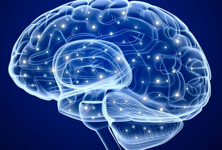 Beynin Etrafında Bilgi Taşıyan Zayıf Elektrik Alan Bulundu