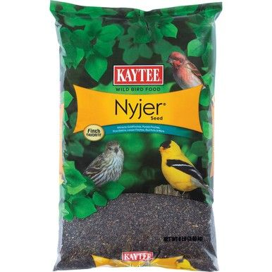 Kaytee Products Food Nyjer Thistle Seed for Bird Pets Natural Cover Treats 8 lbs