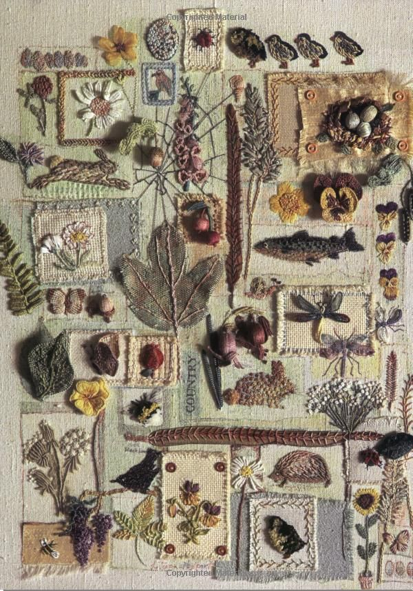 Embroidered Flora and Fauna: Three-dimensional Textured Embroidery: Amazon.co.uk: Lesley Turpin-Delport, Nikki Delport Wepener: Books