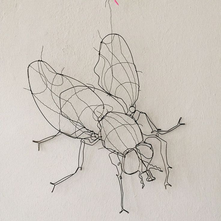 die besten 25 insektenkunst ideen auf pinterest b cherskulptur buchkunst und druckgrafik ideen. Black Bedroom Furniture Sets. Home Design Ideas