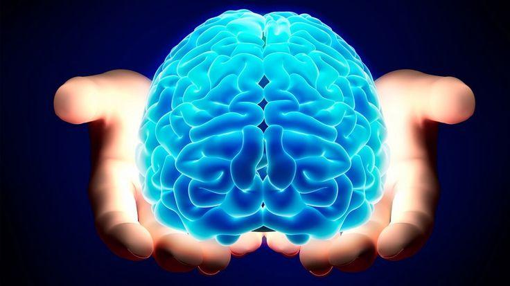 Mente e cervello, una possibile concezione unitaria.