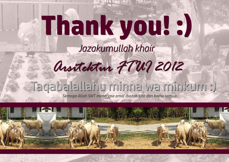Appreciation for contributor :) #TarbiyatulQurban 1437H