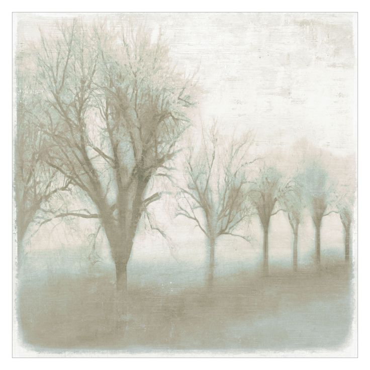 Mystic Morning III Canvas Wall Art  @LaylaGrayce