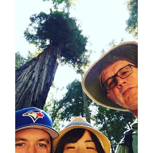【mi_n_mi】さんのInstagramをピンしています。 《Selfie with a huge tree!📱📸🌳 木の高さが分かる様にEamとセルフィしてたらニュッと参加して来たEamパパ。こう言うお茶目なとこ好き🤓❤️ * #tree #trees #forest #hiking #nationalpark #redwoods #redwoodsnationalpark #hats #bluejays #selfie #california #森 #木 #ハイキング #セルフィー #自撮り #旦那 #主人 #お義父さん #ブルージェイズ #カナダ人 #アメリカ生活 #カリフォルニア #海外在住 #海外生活 #国際結婚 #ダーリンは外国人 #カスタマイズエブリデイ》