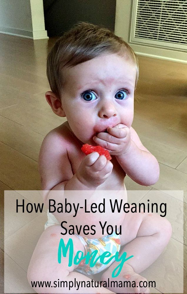 Baby Led Weaning Saves You Money!! Read one mama's experience!