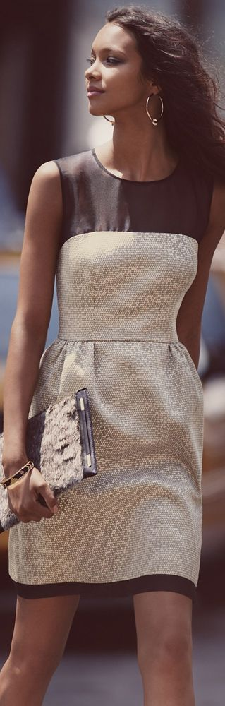 Ivy Blue Jacquard Fit & Flare Dress
