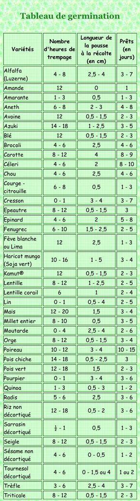 Tableau de germination des pousses
