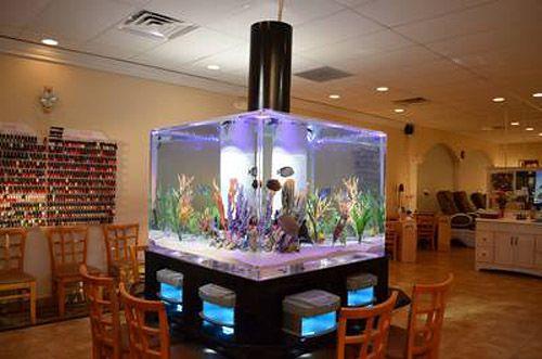 bar fish tank fish tanks pinterest fish tanks and aquariums. Black Bedroom Furniture Sets. Home Design Ideas