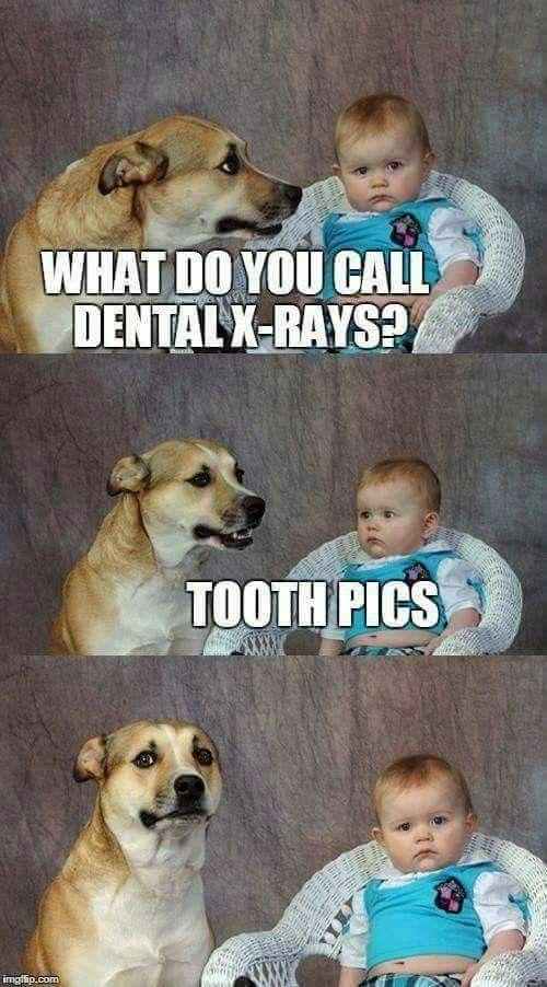 This is cute! Wish I could have remembered to tell this joke to my dentist today!