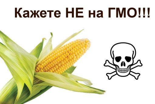 НЕ ЗА ГМО ХРАНА!