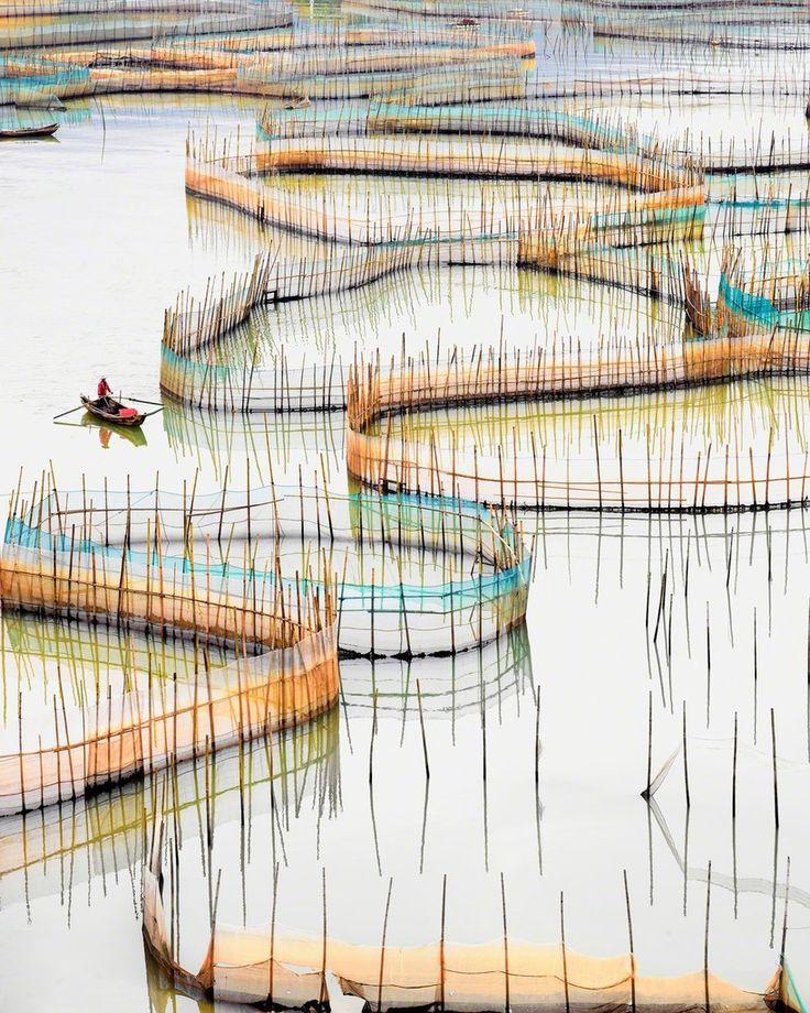 David Burdeny, 'Nets (vertical),  Ningde, Fujian, People's Republic of China,', 2017