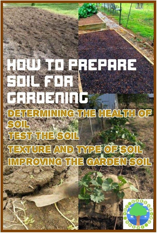 How To Prepare Soil For Gardening Garden Soil Soil Texture
