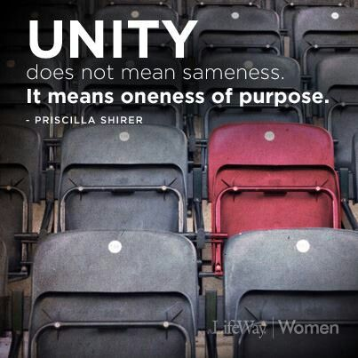 """""""Unity does not mean sameness.   It means oneness of purpose.""""   ~ Priscilla Shirer"""