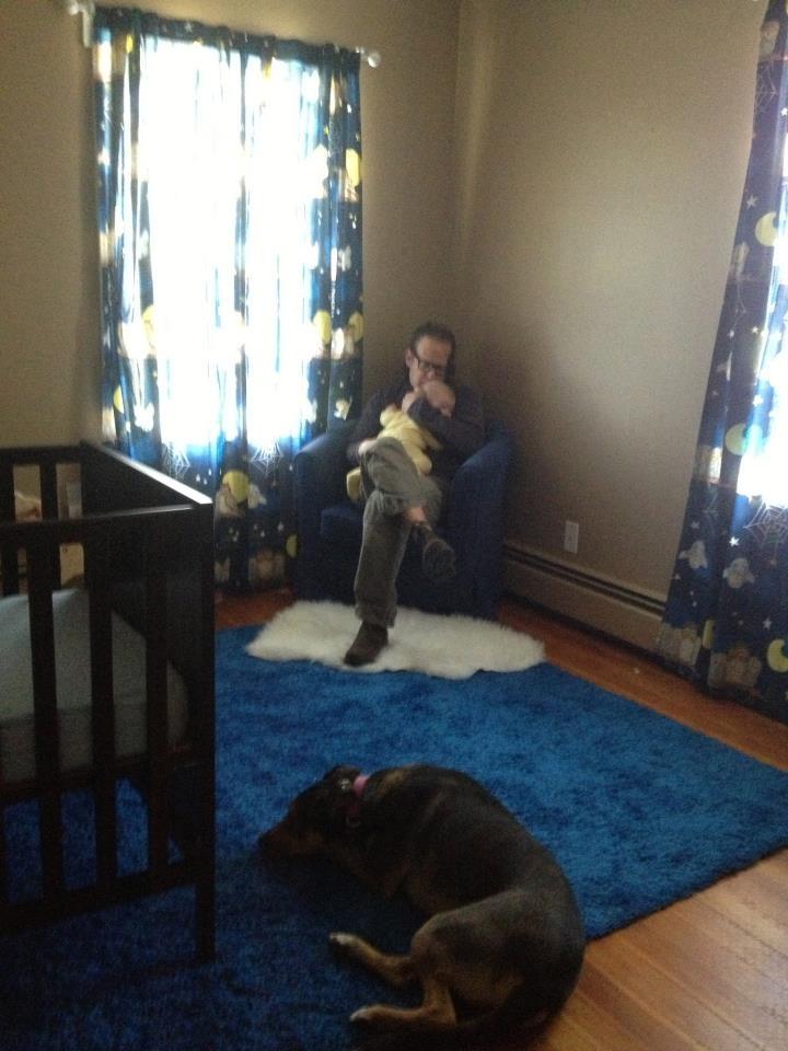 Jeff Gellman Dog Training