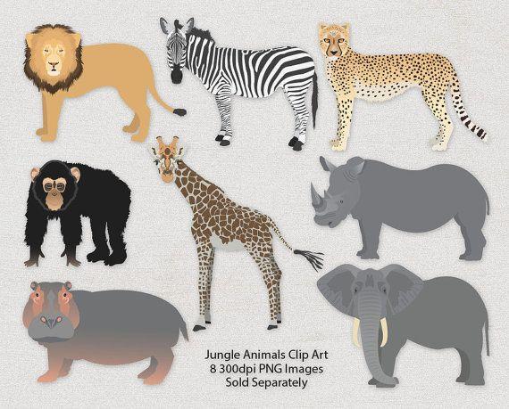 African Animal Clipart Bundle Safari Animal Graphics African With