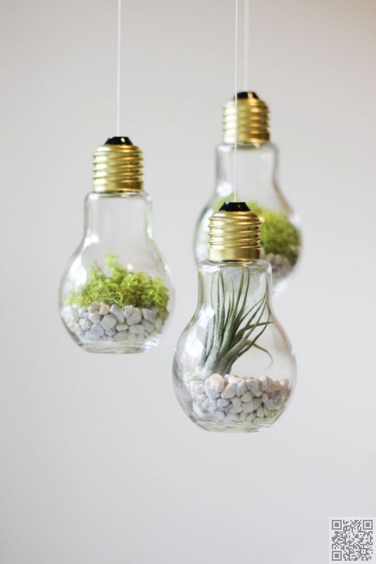 23. Light Bulb #Terrariums - Awesome #Enlightenment! You Have to See These…
