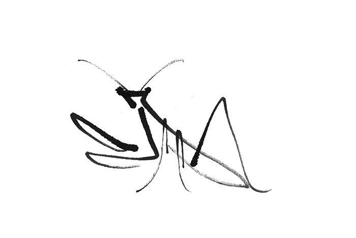 praying mantis in chinese ink, olga inoue