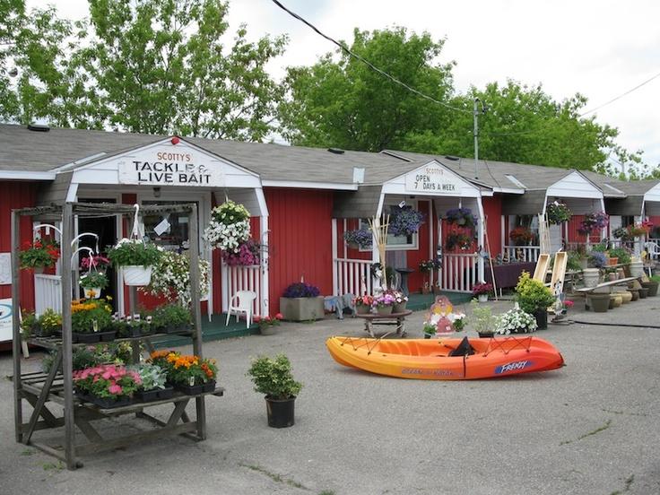 Scotty S Cool Breeze Garden Centre Westport Ontario