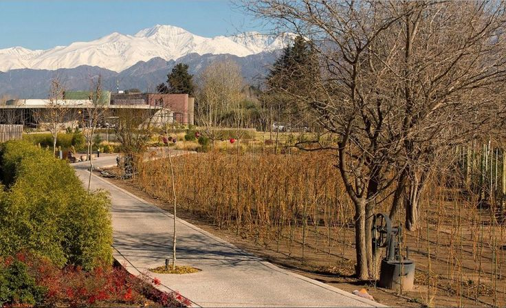 "#Discover the world capital of #Malbec, among #rivers, #valleys and the stunning #AndesRange. In this environment, and surrounded by #vineyards, the #luxurious #Hotel ENTRE CIELOS shows itself as an ideal alternative to combine the enjoyment of ""#wine and #gourmet"" #delicious #experiences, with #relaxation proposed by the #hammam #spa > http://goo.gl/VqnByZ  ● #Mendoza #Patagonia #Argentina"