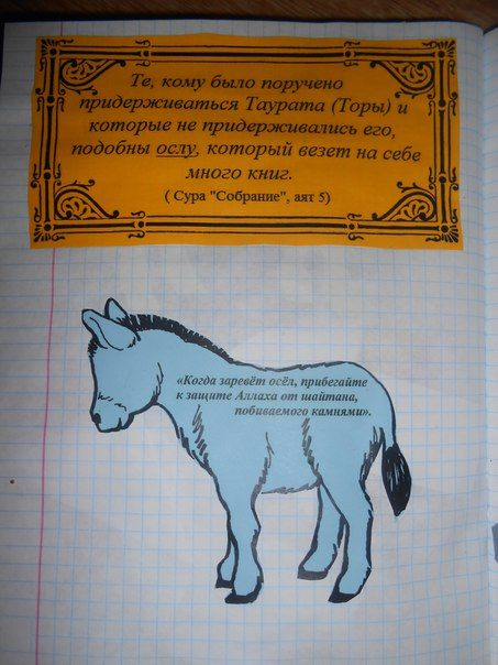 Animals in Quran: Donkey